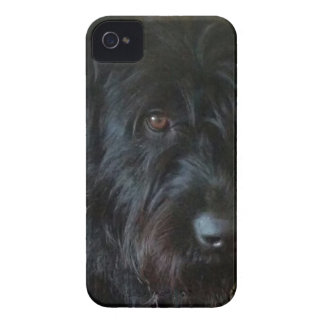 One Mischievous Dog iPhone 4 Case