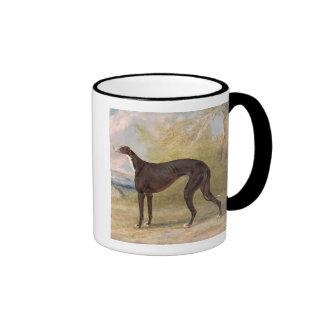 One of George Lane Fox s Winning Greyhounds the B Mugs