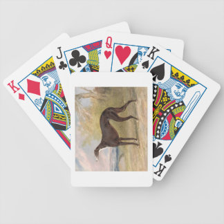One of George Lane Fox's Winning Greyhounds: the B Bicycle Playing Cards
