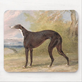 One of George Lane Fox's Winning Greyhounds: the B Mouse Mat