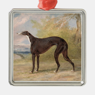 One of George Lane Fox's Winning Greyhounds: the B Silver-Colored Square Decoration