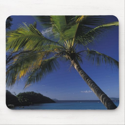 One of the World's Best beaches; Trunk Bay on Mouse Pads