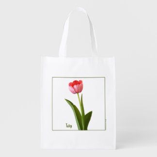 One Pink Spring Tulip Nature Floral Photo