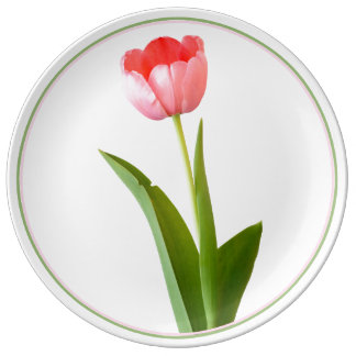 One Pink Spring Tulip Nature Floral Photo Porcelain Plates