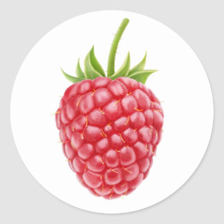 One raspberry round sticker