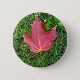 One Red Maple Leaf on grass 6 Cm Round Badge