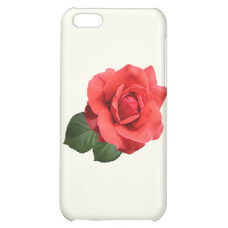 One Red Rose iPhone 5C Cover