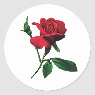 One Red Rosebud Stickers