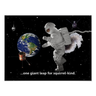 One Small Step for Squirrel Kind Poster