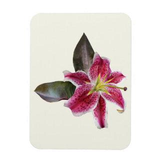 One Stargazer Lily Rectangular Magnet