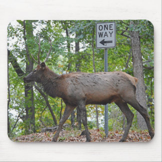 One Way Subordinate Rut Weary Young Bull Elk Mouse Mat