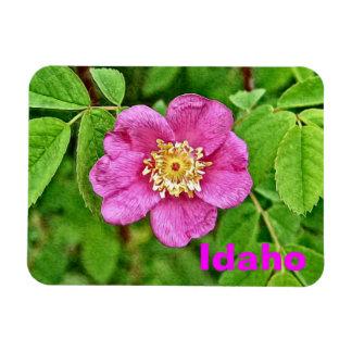 One Wild Rose - Idaho Flexible Magnets