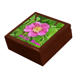 One Wild Rose Large Square Gift Box