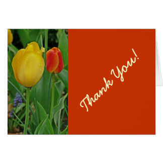 """One Yellow, One Red Tulip"" Thank You Card"