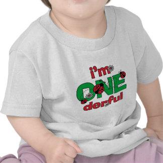 ONEderful Ladybug 1st Birthday Shirts