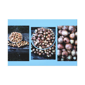 onion approximation canvas print