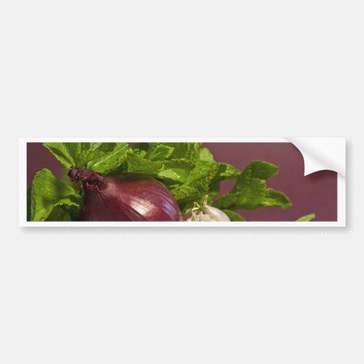 Onion Bumper Sticker