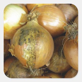 onions square sticker