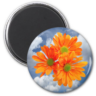 Only 3 Gerbera Daisy Blossoms + your text & ideas 6 Cm Round Magnet