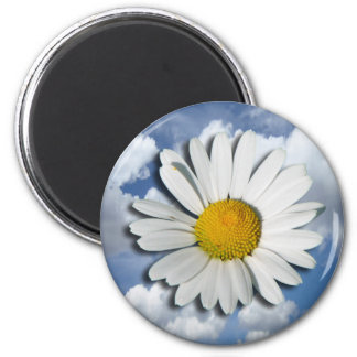 Only a Marguerite Blossom + your text & ideas Magnets