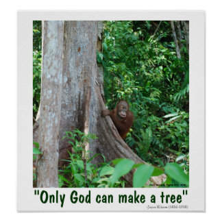 Only God Can Make a Tree and Wildlife Poster