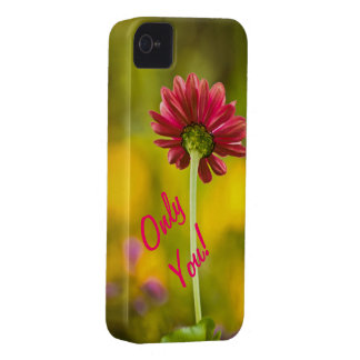 Only You! Case-Mate iPhone 4 Cases