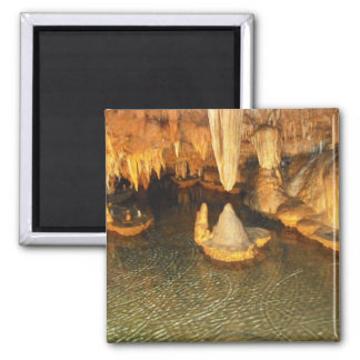 Onondaga Cave - Lily Pad Room Magnet