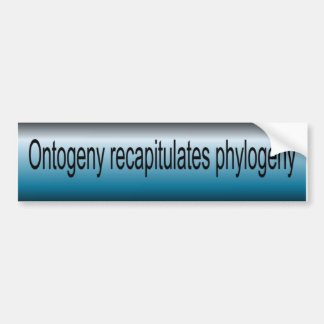Ontogeny Recapitulate Phylogeny Bumper Sticker