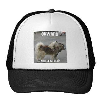 onward noble steed cap