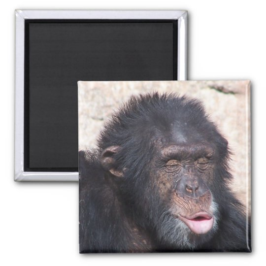 ooo ooo ooo funny face square magnet