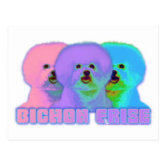 Op Art - Bichon Frise Post Card