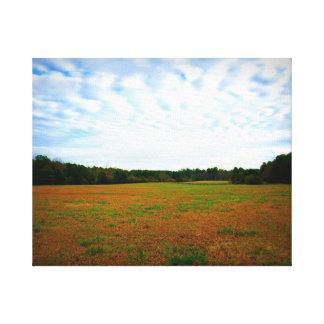 Open Field Canvas Print