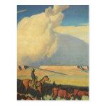 Open Range by Maynard Dixon, Vintage Cowboys Post Cards