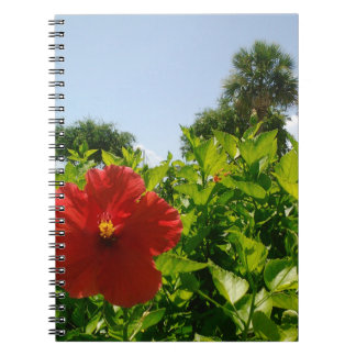 Open Red Hibiscus Notebooks