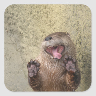 Open Wide! Otter Stickers