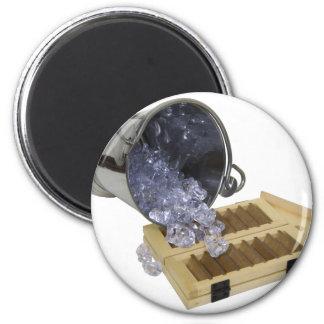 OpenHouseCelebrations060709 6 Cm Round Magnet