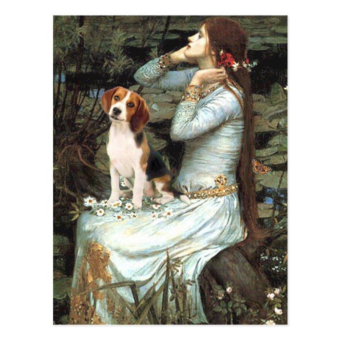 Ophelia-Beagle1 Postcard
