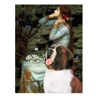 Ophelia - Saint Bernard Post Cards