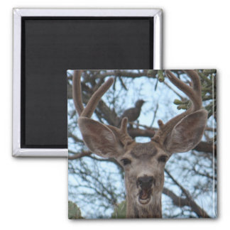 Opinionated Deer Magnet