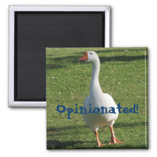 Opinionated Magnet! Square Magnet