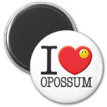 Opossum Fridge Magnets