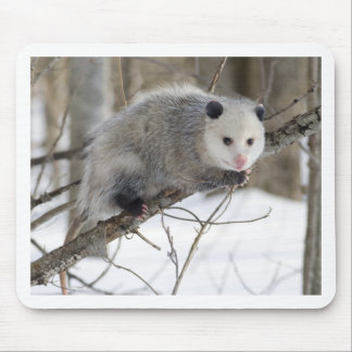 Opossum Love Mouse Pad