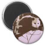 Opossum Pop Art Magnets