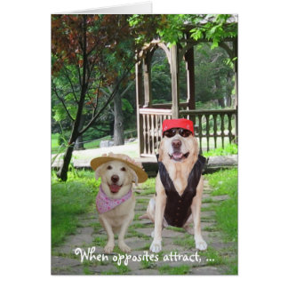 Opposites Attract Funny Dogs Greeting Card