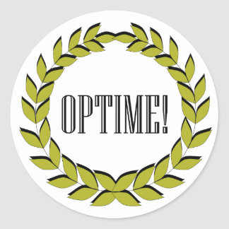 Optime! Excellent job! Round Sticker