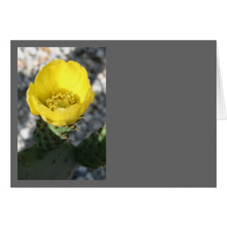 Opuntia Ficus-Indica Prickly Pear Flower Greeting Card