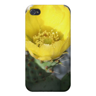 Opuntia Ficus-Indica Prickly Pear Flower Covers For iPhone 4