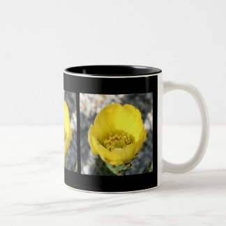 Opuntia Ficus-Indica Prickly Pear Flower Mugs