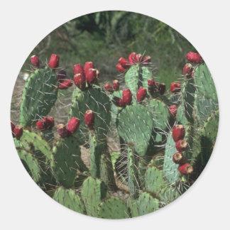Opuntia Fruits Round Sticker