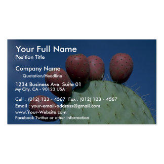 Opuntia megacantha (prickly pear) Desert Pack Of Standard Business Cards